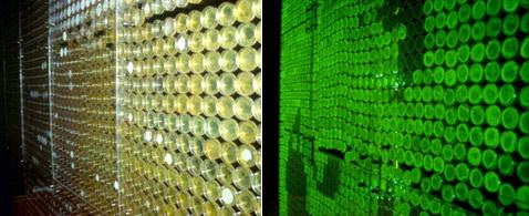 Бактериальный портрет при дневном и ультрафиолетовом свете (фото DNA Consult).