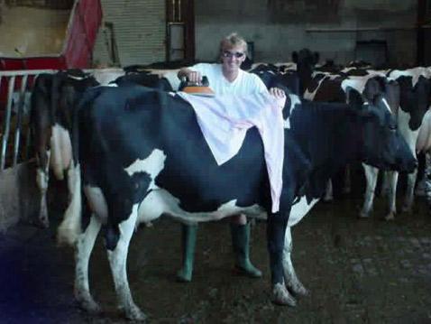 В особенно стеснённых условиях можно вполне обойтись и без гладильной доски (фото с сайта damncoolpics.blogspot.com).