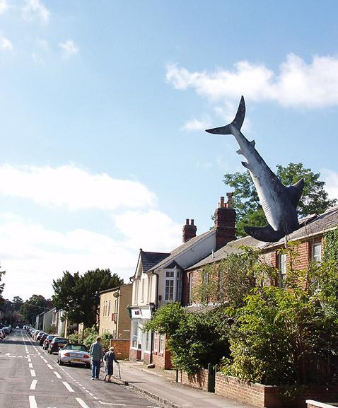 Акула торчит несмотря ни на что. Этот снимок сделан 29 августа 2005 года (фото с сайта kamshots.co.uk).