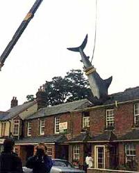 9 августа 1986 года. Зеваки внизу, наверное, и не знают, что это исторический момент (фото с сайта headington.org.uk).